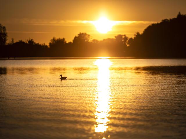 marciac-lac-coucher-soleil-p-pierre-meyer.jpg